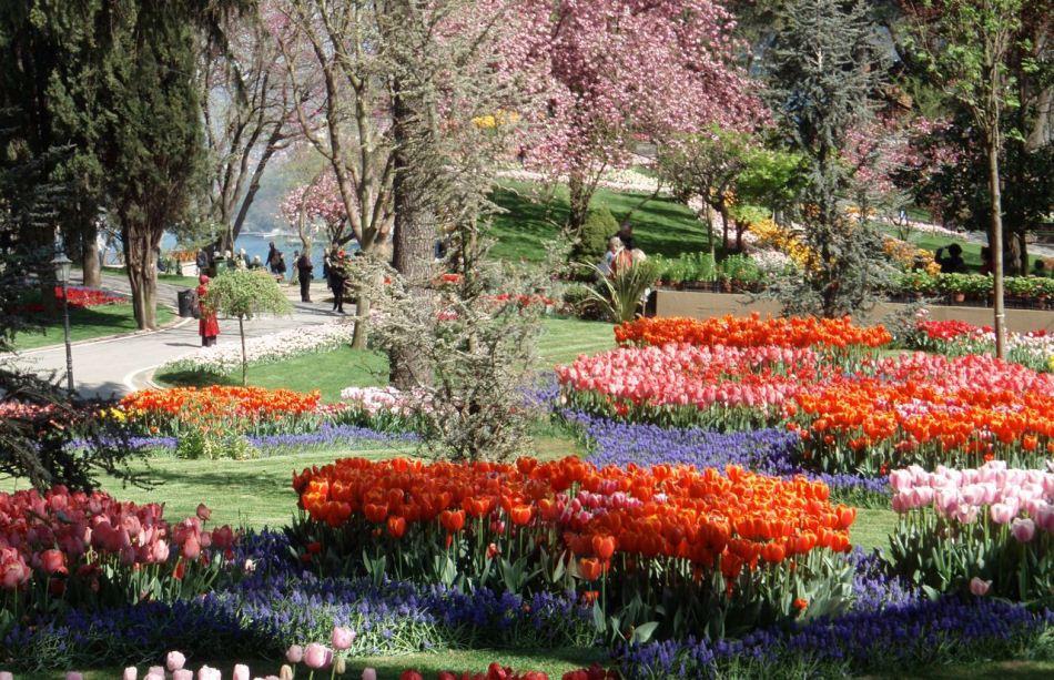istanbul tulip festival emirgan park